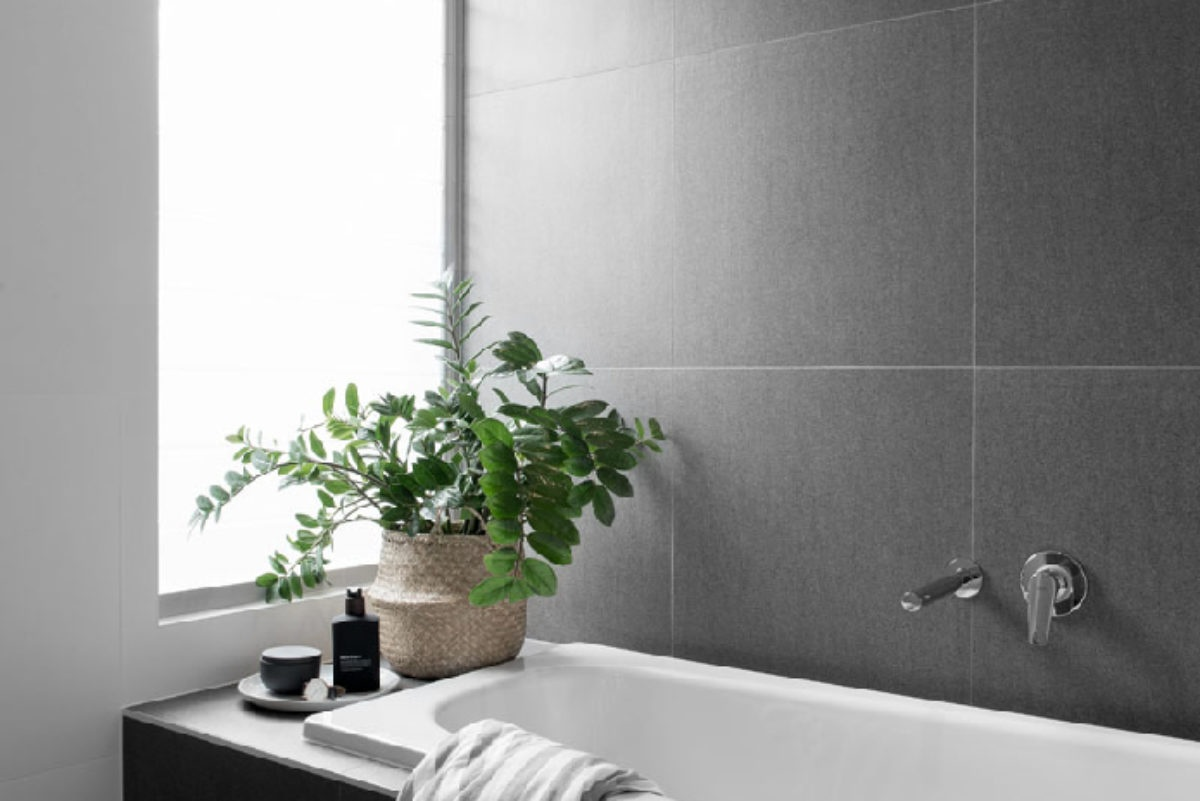 Gold Coast luxury home builder Kalka | bathroom featuring bath and plant from display home in Wooloowin, Brisbane